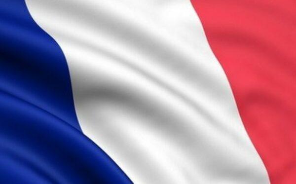 Reakcje na oświadczenie władz Francji o zawieszeniu dostarczenia pierwszego okrętu Mistral