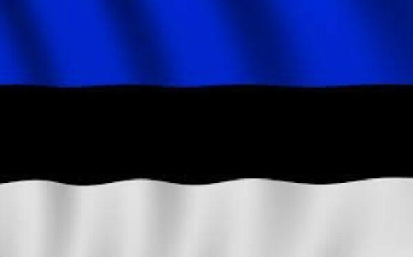 MSZ Estonii przytacza przykłady wdrożonych antyrosyjskich sankcji